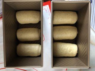 牛奶吐司,一盒三个卷摆放好