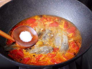 番茄啤酒炖光鱼,再加入白糖,根据个人口味,加入适量的盐调味。