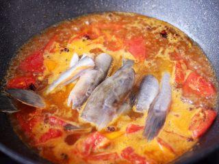 番茄啤酒炖光鱼,大火把汤汁烧开后,放入切段的光鱼。