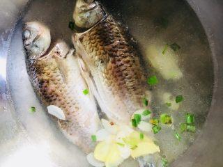 鲫鱼汤,放入适量的开水没过鱼即可