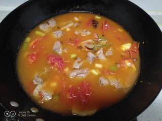 西红柿炖牛肉,加入沫过牛肉的温开水。