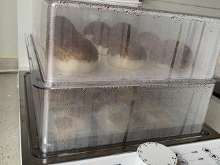 仿真蘑菇包,关火后焖5分钟后出锅。