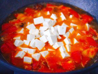 肉末番茄烩豆腐,放入焯过水的豆腐。