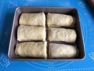 南瓜椰蓉面包,另一半面团同样操作,切好的六分面包坯摆入11寸烤盘,表面覆盖保鲜膜进行第二次发酵