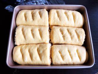 南瓜椰蓉面包,发至体积约1.5倍大