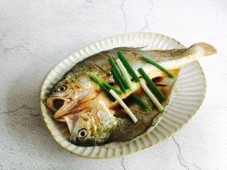 广式清蒸黄鱼,摆上葱段