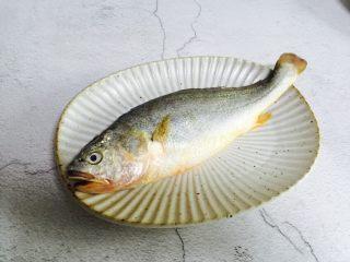 广式清蒸黄鱼,新鲜黄鱼一条