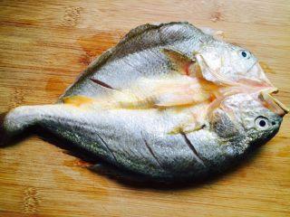广式清蒸黄鱼,在鱼背上划三刀
