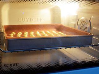 鸡蛋小饼干,放入预热好的烤箱,上下火150度,烘烤大约15分钟左右,具体还是以自家烤箱脾气为准,烤的时候要根据挤的面糊大小而调整