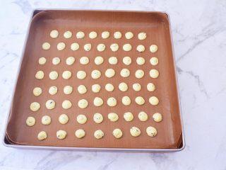 鸡蛋小饼干,再均匀的挤在烤盘上,烤盘记得铺上油纸或者耐高温油布