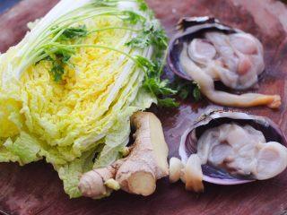 天鹅蛋白菜海鲜小炒,首先把大白菜和香菜洗净,天鹅蛋我买的时候,直接让卖家帮忙打开壳了。