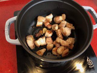 小拉家私房红烧肉 | 酱汁拌饭两碗米饭下肚 ,把煎好的五花肉放入锅中,放入八角。