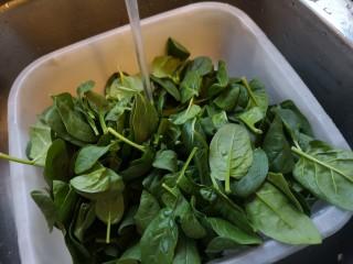 虾丸菠菜汤,准备菠菜洗干净。