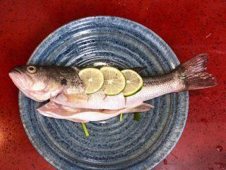 泰式青柠蒸鱼∣鲜嫩口感酸甜开胃,在切口放上青柠片,肚内放上几段香葱、2片姜,去腥。