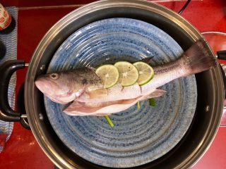 泰式青柠蒸鱼∣鲜嫩口感酸甜开胃,蒸锅内加入水,水烧开放入盘,大火蒸煮。