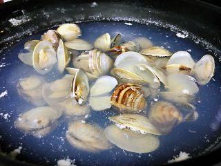 清煮文蛤,锅中加入清水烧开,文蛤倒进去,大火烧开之后转为中小火煮3~5分钟,至所有文蛤张开,捞出沥干水分,装入盘中。