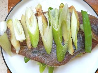 炖扁口鱼,鱼两面切成花刀,放少许盐,料酒,葱姜腌制20分钟