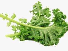 """羽衣甘蓝的7个健康益处,让它成为了""""超级食物"""""""