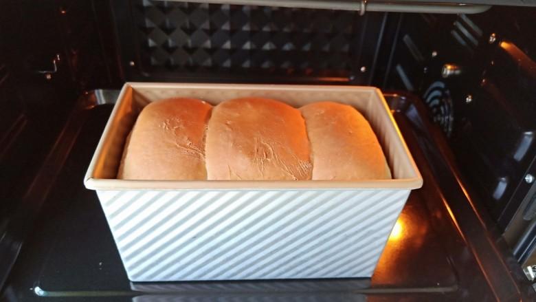 黑麦全麦吐司,烤好了出炉。