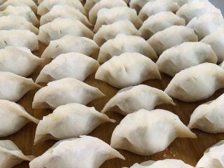 猪肉茴香馅儿饺子🥟,擀好的面皮中加入20克的馅料,双手对捏包成元宝饺子。