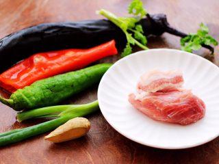 茄丁双椒炒肉丁,先把炒茄丁的食材都准备好。