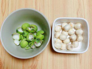 鲜荷叶百合莲子粥(清热解暑),将莲子外的青衣剥掉。留下鲜莲子。