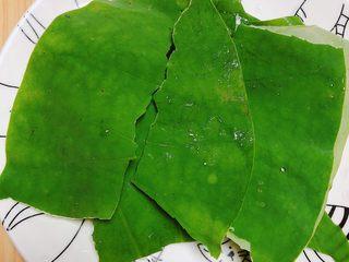 鲜荷叶百合莲子粥(清热解暑),将荷叶洗好,撕成小片儿。