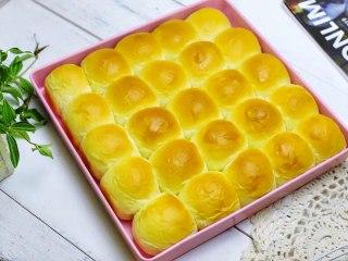 酸奶小餐包,烤好的小餐包口感又香又软,真是太好吃了!