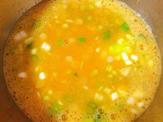 鸡蛋时蔬煎饼卷,鸡蛋打散放入香葱粒少许盐搅拌均匀