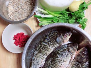 冬瓜鲫鱼汤,准备好食材。鲫鱼、冬瓜、葱姜、香菜、薏米、枸杞子。