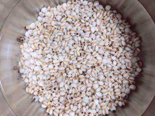 冬瓜鲫鱼汤,将薏米仁提前泡至少2小时。