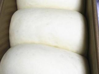 酸奶土司,整形好的面团放入模具,进行二次发酵,二发的环境要求温度36-38度,温度最高不要超过38度。湿度75%。发酵至8分满后,加盖土司盖(山形吐司不用加盖)放入预热180度的烤箱,40分钟左右即可。烤好后立即出炉,震一下后即刻脱模,冷却至掌温后密封保存。建议3天内吃完。