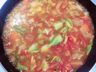罗宋汤,倒入1000ml水,烧开后盖盖儿,中火炖煮10分钟。