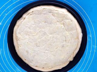 芝士榴莲饼,再把所有的榴莲果肉泥均匀的抹在饼坯上面