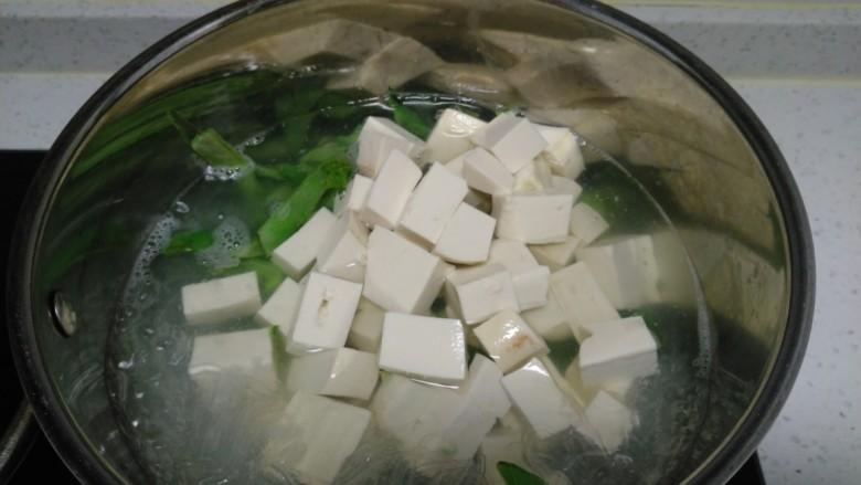 猪血、豆腐、粉丝、扁豆丝汤,放入豆腐