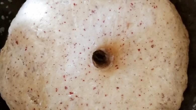 红枣馒头,面团成两倍大,手指粘面粉,在面团中间插入,洞不回缩就发酵好了。