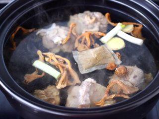 榛蘑山药筒骨煲,把砂锅冲洗干净后,重新放入适量的清水,放入焯过水的筒骨,加入葱段和姜片,再放入骨头汤的调料,最后把浸泡榛蘑的水和榛蘑也一起倒入砂锅里。