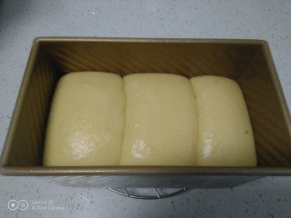 手撕面包,发酵至2倍大