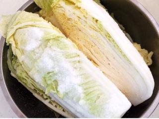 韩式辣白菜,把盐撒匀后腌制6个小时左右