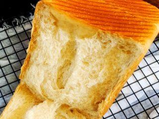 手撕面包,撕它😄