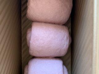 紫米面包,入模具