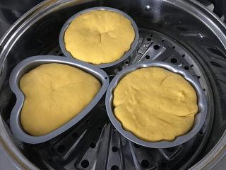 南瓜豆沙馒头,蒸锅中加入适量冷水,将做好的馒头生胚放入锅中,三层刚好,室温发酵至模具的8~9分满