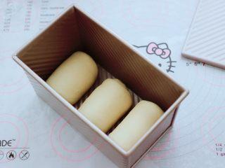 波兰种牛奶吐司,依次做完3个吐司胚,把卷好的吐司胚放入学厨吐司盒里。