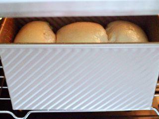 波兰种牛奶吐司,放入烤箱进行发酵模式,发酵至8、9分满。