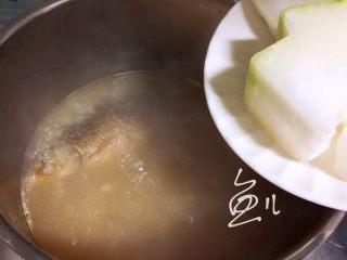 冬瓜鲫鱼汤,中火煮20分钟,放入冬瓜块