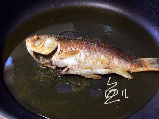 冬瓜鲫鱼汤,一面煎至金黄色翻面,煎另一面