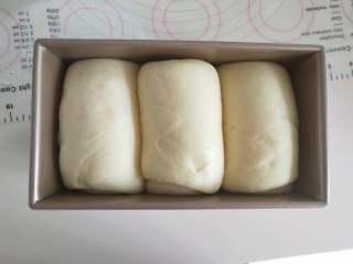 酸奶土司,13、发酵到土司盒8分满。