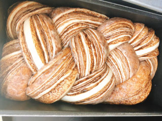 醇香巧克力吐司,发酵好的吐司如图所示,盖上盖子,准备放入烤箱中烤。