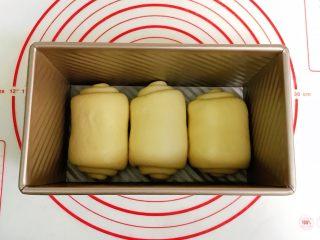 肉松吐司,收口朝下,同向放入吐司盒内。