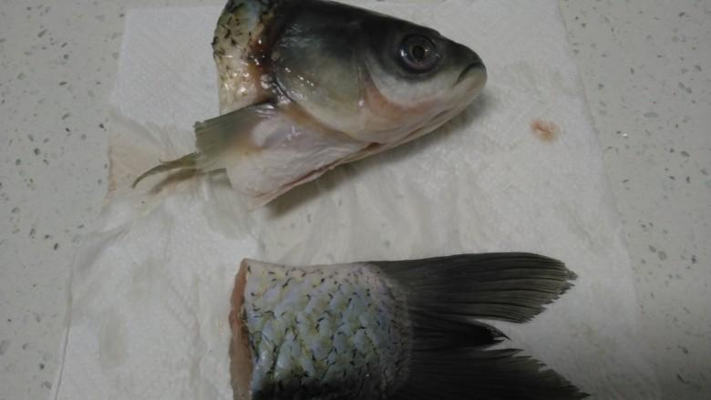 冬瓜、白菜炖鱼头、鱼尾,用厨房纸擦干鱼身上的水分